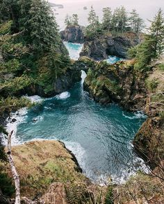 Today's Location: Samuel H Boardman State Park, Oregon  Photographer: @sarah.bethea•  Samuel H. Boardman State Scenic Corridor is a linear state park in southwestern Oregon. It is 12 miles long and thickly forested along steep and rugged coastline with a few small sand beaches. It is named in honor of Samuel H. Boardman, the first Oregon Parks superintendent. •  Selected by:@jeff_bell_photos •  #pnwonderland #beach #coast #oregon #oregonexplored #traveloregon #cascadia #pnw #explore…
