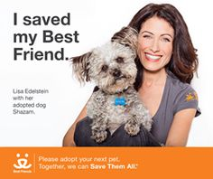 Lisa Edelstein, Star of New Bravo Series, 'The Girlfriends' Guide to Divorce' Joins Best Friends Animal Society's Save Them All Campaign