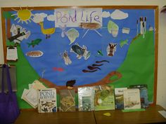 Children's mural and resources for investigating the pond -