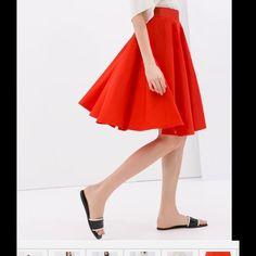 Zara Dresses & Skirts - Zara midi skirt