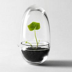 Design House Stockholm - Grow Gewächshaus, Situationsbild