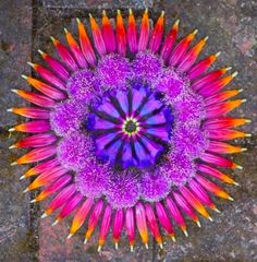 Danmala Mandalas: Elegant, Intricate Circles Made From Nature by Kathy Klein via jeannie jeannie Mandala Art Flower Rangoli, Flower Garlands, Flower Petals, Flower Art, Mandala Art, Land Art, Art Sculpture, Environmental Art, Orange Flowers
