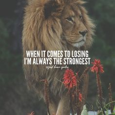 If things are going wrong remember that these moments are building your character and they're also giving you more strength. You are destined for the great, never forget that! Fierce Quotes, Badass Quotes, Best Quotes, Funny Quotes, Lion Quotes, Wolf Quotes, Entrepreneur Motivation, Entrepreneur Quotes, Elegance Quotes