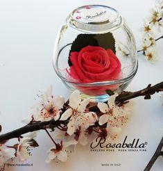 #rosabella #rosastabilizzata #rosestabilizzate #rosagioiello #endlessrose #everythingwillbeokay #spring #springseason #bloom #blooming #rosa #rose #primavera #fiori #natura #instaflower #flowerpower #naturelovers #lockdown Rose, Flower Power, Alcoholic Drinks, Bloom, Glass, Spring, Pink, Drinkware, Corning Glass