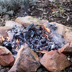 Ina Paarman   Shin and Oxtail Beef Potjie Curry Recipes, Meat Recipes, Salted Caramel Fudge, Salted Caramels, Oxtail Meat, Camping Meals, Camping Recipes, Biltong, Fire Cooking