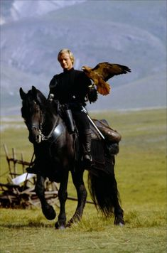Navare from the 80's movie LadyHawk - the first time I'd ever seen a Friesian.