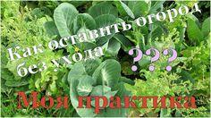 ☞ СОВЕТЫ: Как огороднику уехать в отпуск? Как оставить сад без присмотра...