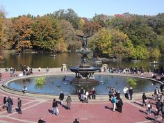 NYC - Central Park in New York City