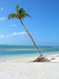 The Cay Islands
