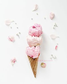 Triple Scoop- Big, pink, fluffy peony blooms in a waffle cone. Happy Floral fine art print.