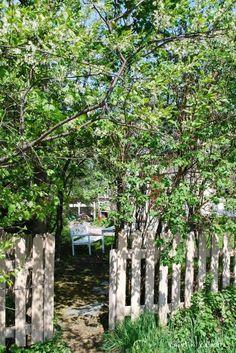 Kuistin kautta: Salainen puutarha