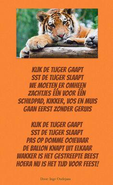 Sst de tijger slaapt