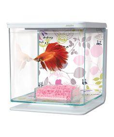 Floral Marina Betta Fish Aquarium Set