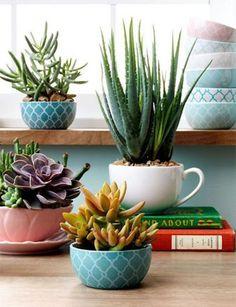 imaginarium-dicas-pra-decorar-casa-com-flores-5