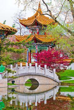 Beautiful Chinese Garden in Zurich, Switzerland - (CC) Emmanuel Keller (Tambako the Jaguar) - www.flickr.com/photos/tambako/7379956228/in/photostream/#
