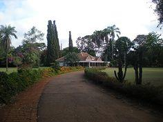 "Karen Blixen Museum, Nairobi, Africa. Once the home of Karen Blixen (Isak Dinesen), Danish author of ""Out of Africa"""