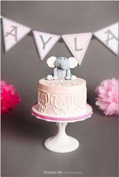 Elephant Smash Cake