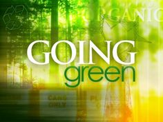 Eco Friday: 8 Ways to Go Green in an Eco-Friendly world Go Green, Green Tips, Green Ideas, Jackson Hole, Costa Rica, Green Business, Business Tips, Cleaning Recipes, Cleaning Products