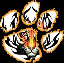 Love my Clemson Tigers! Clemson University Football, Lsu Tigers Football, Football Art, Auburn University, Death Valley Clemson, Tiger Stencil, Tiger Paw, Angry Tiger, Tiger Wallpaper