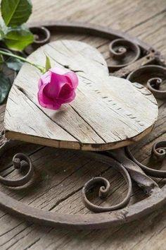 (1) From: Bella Faye Garden, please visit