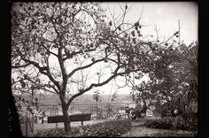 """POITIERS - """" En visite chez des amis, Avenue de Bordeaux """" - Vers 1940.    Photo issue d'une collection privée légué à l'inventaire général (des monuments et des richesses artistiques de la France) Hélène Plessis-Vieillard (1892-1987)"""