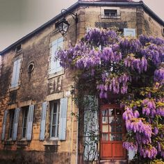 Lilacs blooming in #Burgundy. Photo courtesy of sasadoesamerica on Instagram.