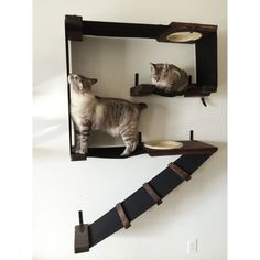 Vertical Wall-Mounted Cat Fort