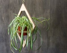 Modern Hanging Planter- Mid Century Plant Stand- Geometric Wooden Planter- Indoor Brass Planter- Boho Decor- Modern Home Gift- FREE SHIPPING