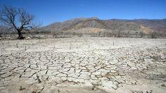 Pérdidas económicas, pobreza y migración: los daños que provoca la desertificación en Chile