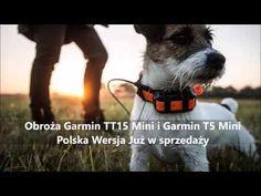 Produkty w kategorii Dla psów myśliwskich Garmin z GPS Obroża elektryczna,obroża elektroniczna,antyszczekowa,wabik
