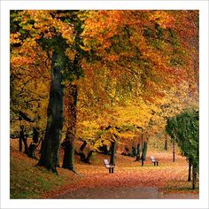 Glowing colours - Halmstad, Halland