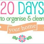20 Days to Organise & Clean your home Challenge – Day 10 - the oven, kitchen cupboards