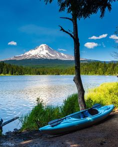 Government Camp, Ski Season, Time Of The Year, National Forest, Four Seasons, Mount Rainier, Acre, Oregon, Skiing