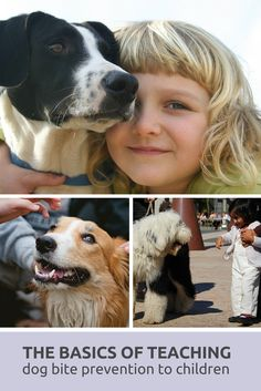 The Basics (and importance of) Teaching Dog Bite Prevention to Children. #dogs #dogs and people