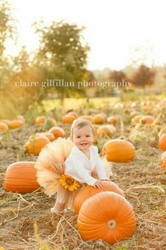 similar to SALE Pumpkin Spice Tutu - Perfect for fall photos and made in any size Newborn - on Etsy little girl photo shoot ideas Foto Newborn, Newborn Photos, Autumn Photography, Children Photography, Photography Ideas, Halloween Photography, Cute Photos, Cute Pictures, Kid Photos