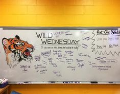 RawWWwwrrrRRRrrr!!! Today was Wild Wednesday! If you were an exotic animal, what would you be and why? #whiteboard #whiteboardart…