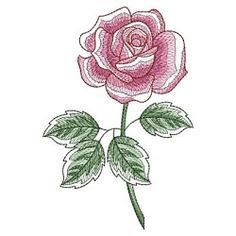 Sketched Roses 2, 2 - 5x7 | What's New | Machine Embroidery Designs | SWAKembroidery.com Ace Points Embroidery