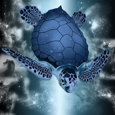 Blue Sea Turtle--the turtle is not actually blue. I checked the original and the photographer took the photo at a Wash., D.C. aquarium, then digitally changed the color.  Very cool...