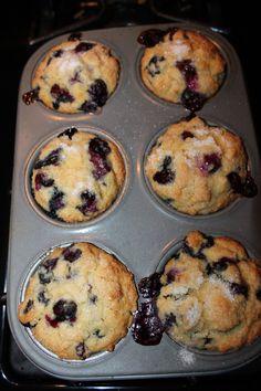 Gluten Free Blueberry Muffin 015