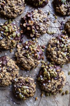 Harvest Oatmeal Choc