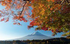 Download wallpapers Fuji, mountain, Japan, autumn landscape, mountains, Fujiyama, stratovolcano, Honshu