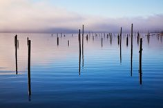 Out of the Mist by Lee Rentz -   along Washington's Hood Canal - sticks were to tie up rafts of logs