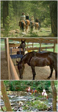 Bryson City Boarding Stables & Horse Camp - Smoky Mountains - Bryson City - North Carolina