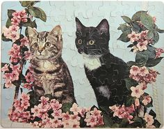 #Puzzle #cat