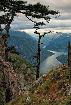 National Park Tara, Serbia