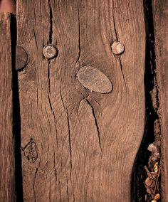 fence face