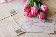 tulips......