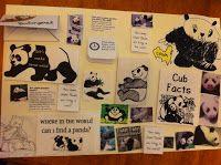 Sunrise Learning Lab: Pandas: Postively Popular with Us Here!