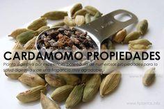 Cardamomo, cardamom usos y propiedades | 9Plantas Cocina Natural, Salud Natural, Ayurveda, Turmeric, Health Tips, Almond, The Cure, Spices, Remedies