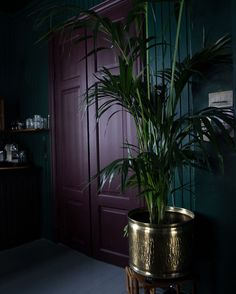 Best Glidden Interior Paint Colors for a Purple Bedroom Dark Interiors, Colorful Interiors, Bedroom Green, Bedroom Decor, Dark Purple Bedrooms, Goth Bedroom, Deco Violet, Purple Interior, Modern Interior